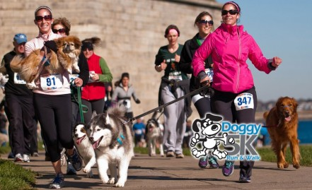 2013 Doggy 5K now open for registration!